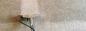 pro carpet cleaner